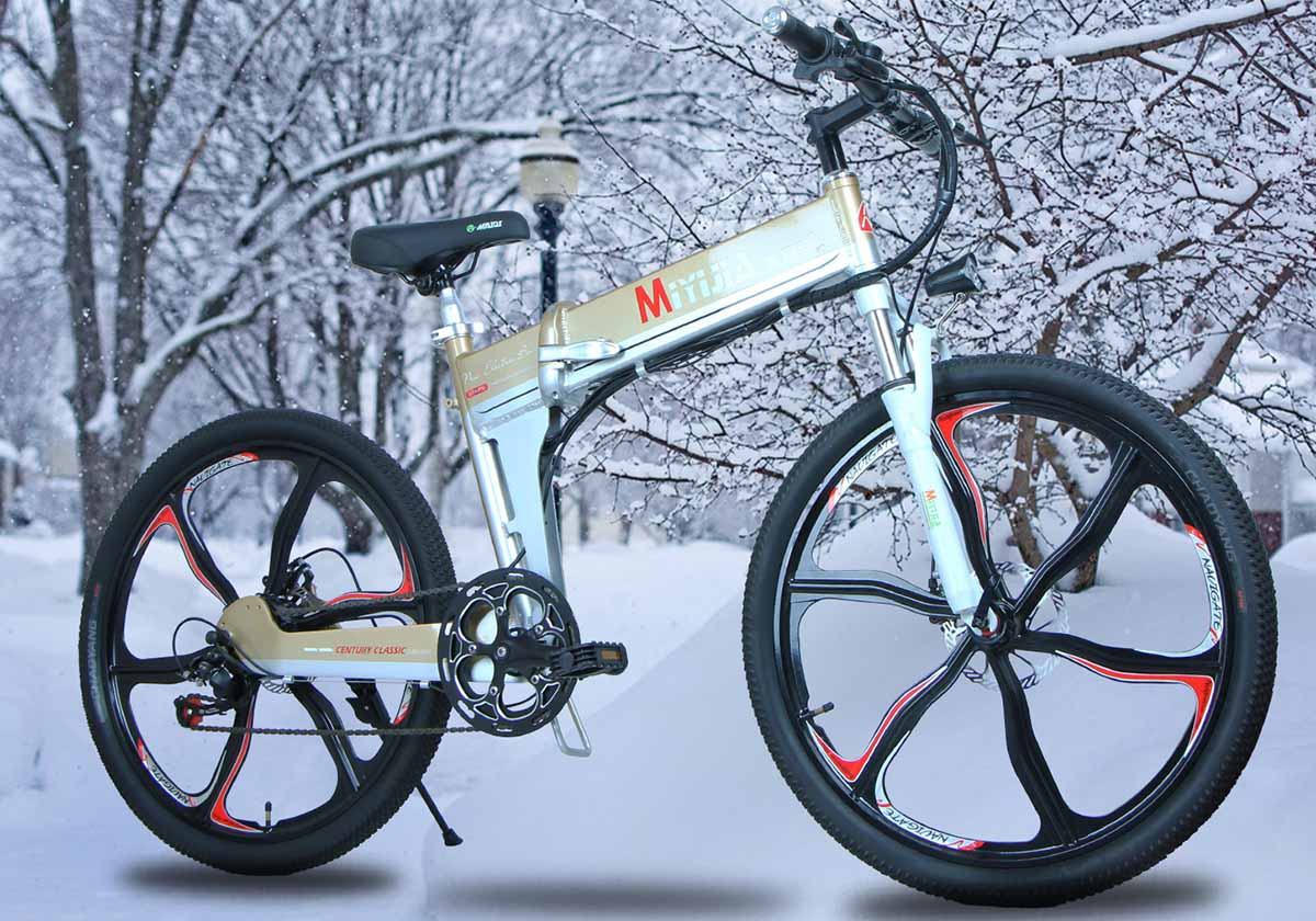 Giantplus-Electric Bikes For Adults | Bm4 The coolest electric mountain bike