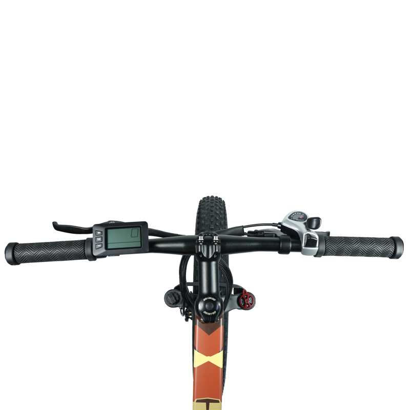 Giantplus-Electric Bicycle Reviews, Lithium Battery Power Bm5 The All Terrain Electric-10