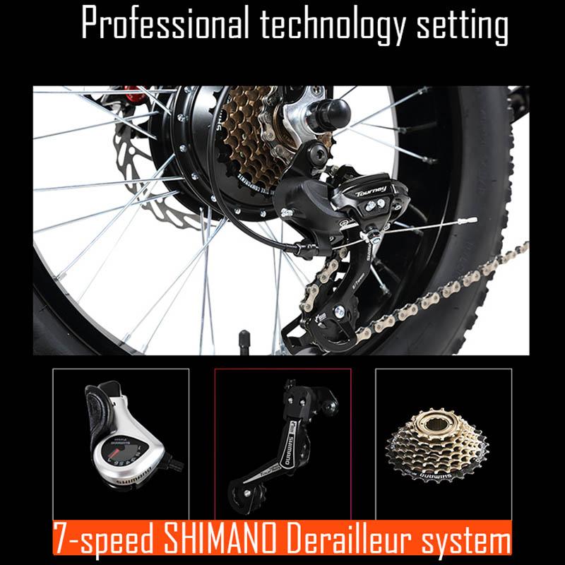 Giantplus-Lithium Battery Power Bm5 terrain electric bike For Sale-12