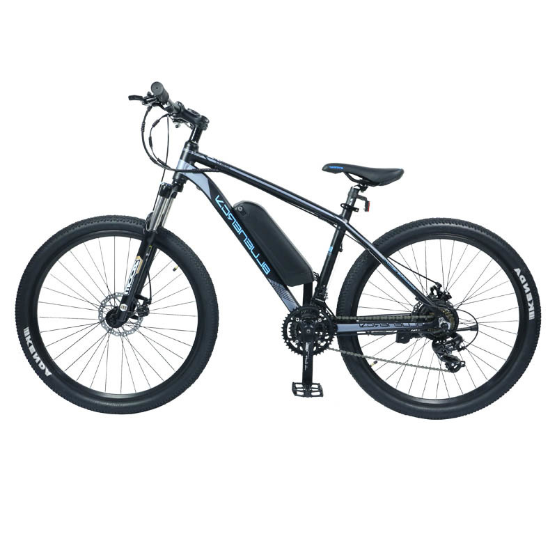 BM7 The swappable battery electric bike