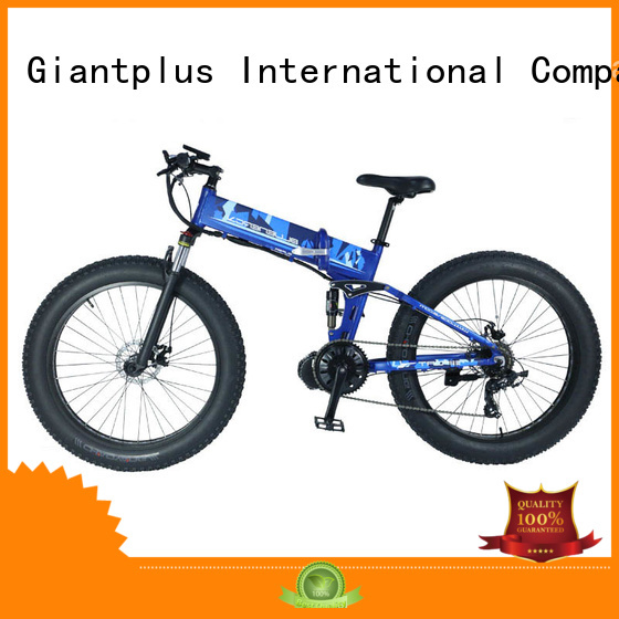 electric bike distributors women commuting coolest Giantplus Brand wholesale e bikes