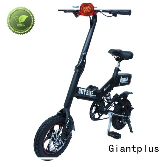 latest two battery magnesium wholesale e bikes Giantplus