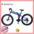 folding wheels wholesale e bikes power Giantplus Brand