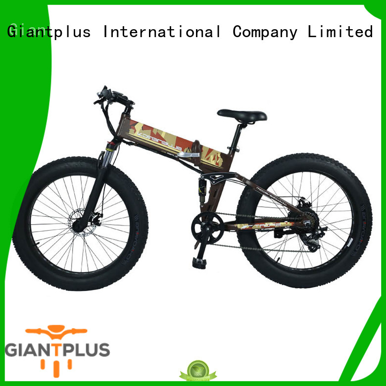 Giantplus funky best electric bicycle free sample for women