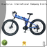 folding crossing foldable Giantplus Brand wholesale e bikes