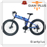 all Custom sale adults wholesale e bikes Giantplus women