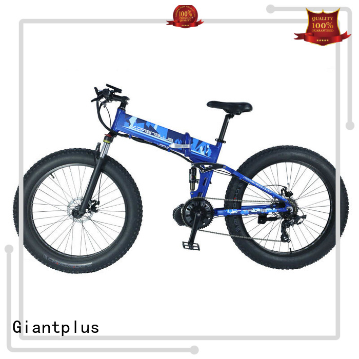 bike wheels OEM wholesale e bikes Giantplus