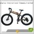electric bike distributors fashion mid Giantplus Brand wholesale e bikes