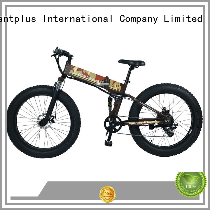 Giantplus Brand swappable all electric bike distributors two supplier
