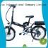 Quality Giantplus Brand women wholesale e bikes
