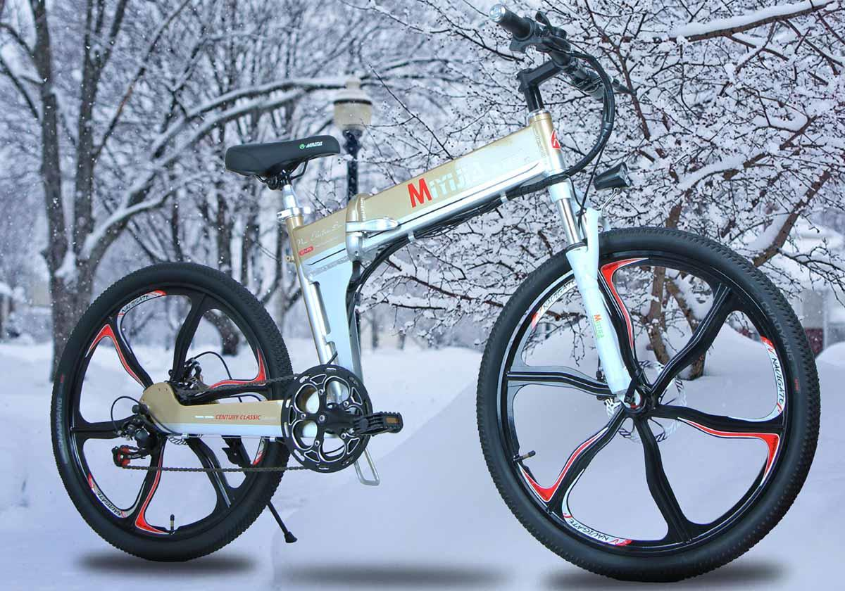 Giantplus-High-quality Electric Bikes For Adults | Latest Bm4 The Coolest Electric